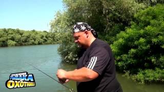Рыбалка на Карпа. р.Днестр Прикормки