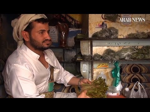 Qat and its relationship with impoverished Yemen