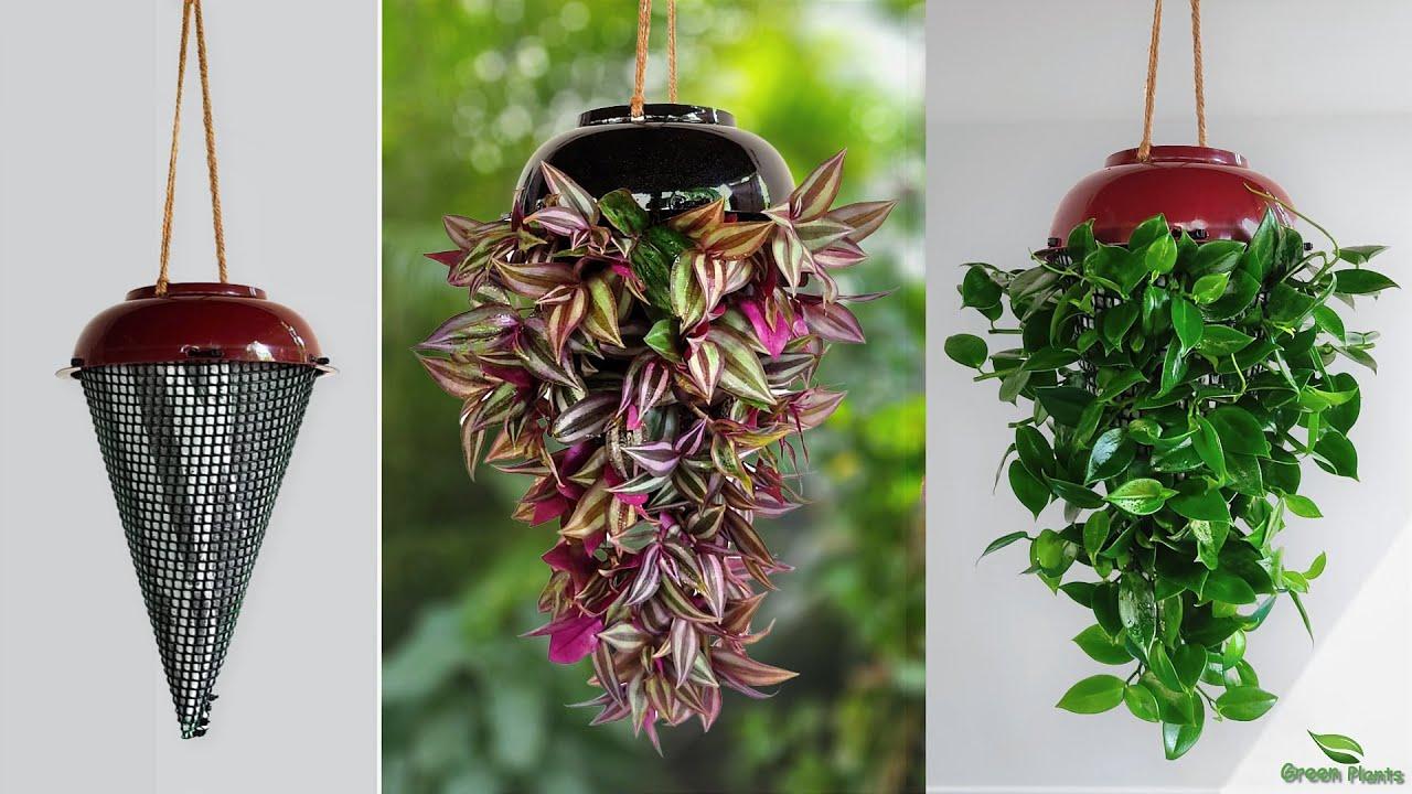 Download Indoor Hanging Planters to Refresh Your Home   Hanging Plants   Hanging Planter Making//GREEN PLANTS