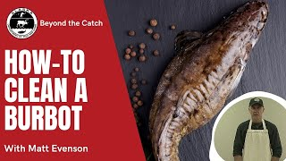 How to Clean a Burbot