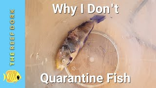 Why Quarantine Sucks And What You Should Do Instead