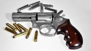 Caller: Liability Insurance on Guns, Where Does it End?
