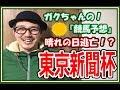 【東京新聞杯2018】予想動画!晴れの日逃亡のあの馬にサイン!?【競馬予想】
