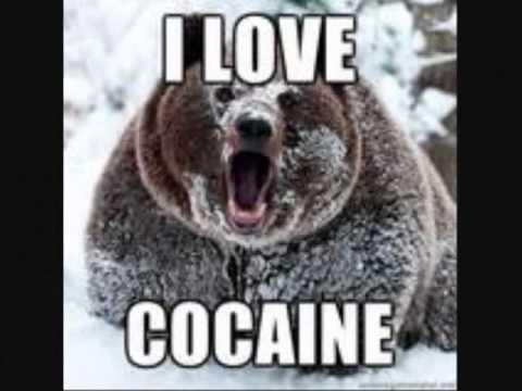 Cocaine Hoe Down - Maclean and Maclean