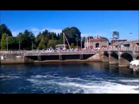 Ballard Locks and Fish Ladder