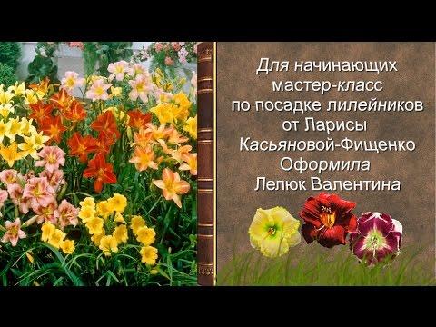 Дарья Сагалова Лучшие эротические фотки и видео Голая