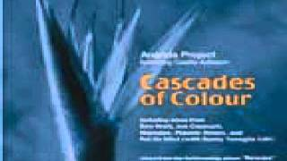 Ananda Project ‎-- Cascades Of Colour (Danny Tenaglia Mix)