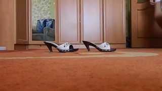 видео Pierre Cardine в Кари  что такое? | Покупки | Покупки и мода | EVA.RU
