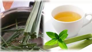 como preparar el te de malojillo para adelgazar
