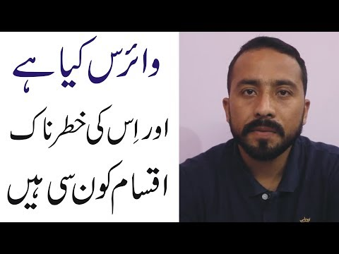 Difference Between Malware And Ransomware|Complete Explanation In Urdu/Hindi