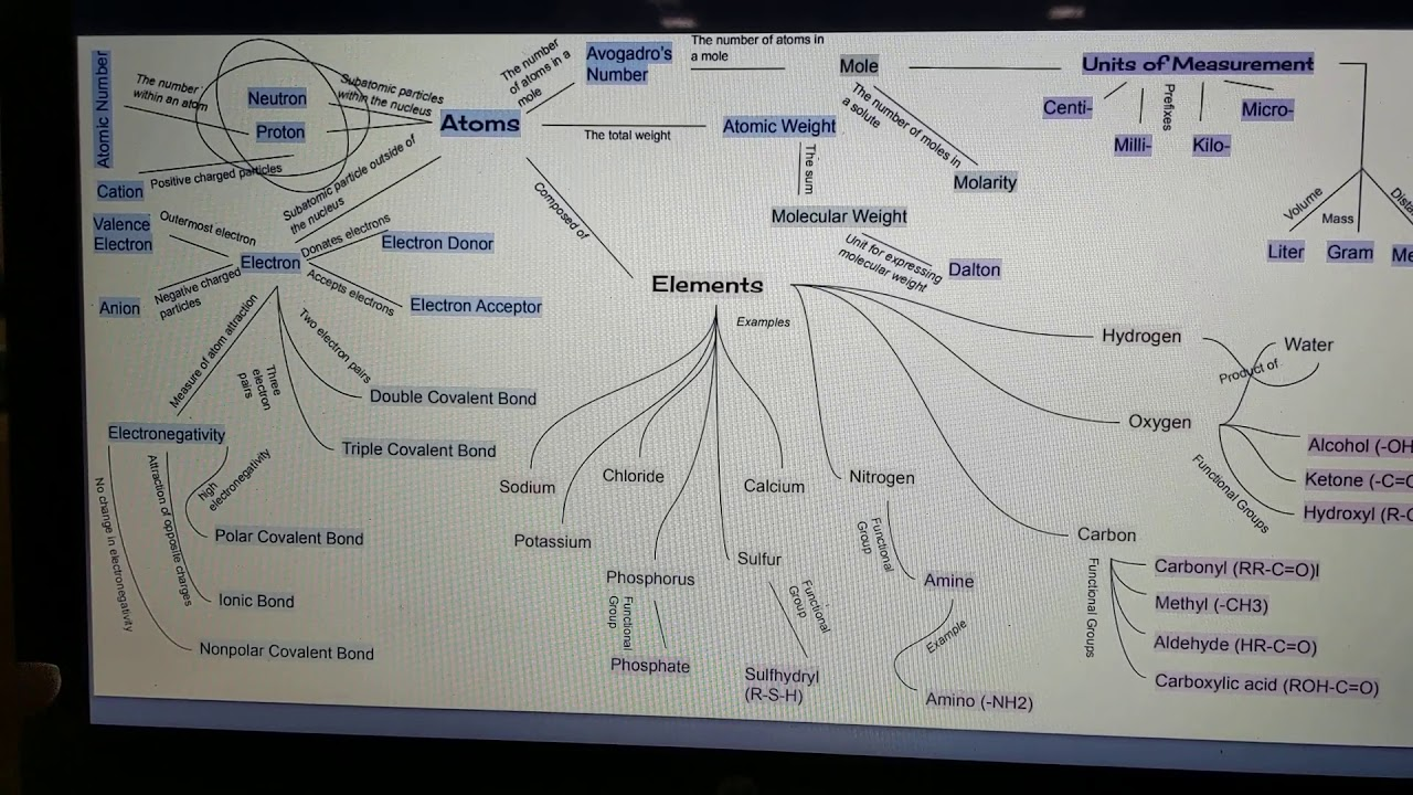 Concept Map (Cell Biology) - YouTube