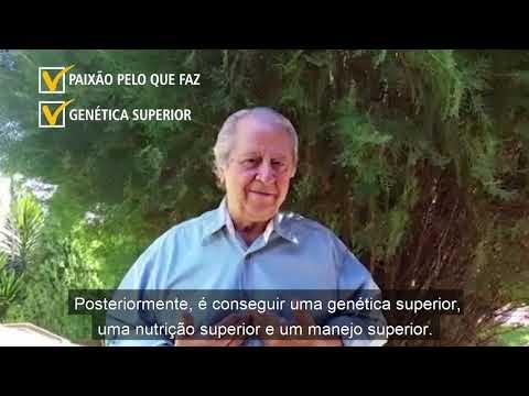 Jornada do Cliente DB #3 - Granja Jeroá Suínos