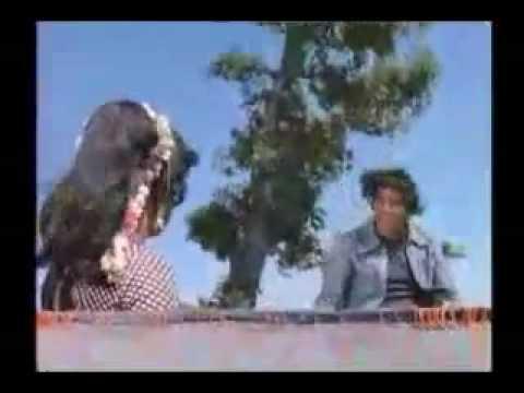 1975 Sholay - Koi Haseena Jab Ruth Jati Hai To Aur Bhi Haseen.flv