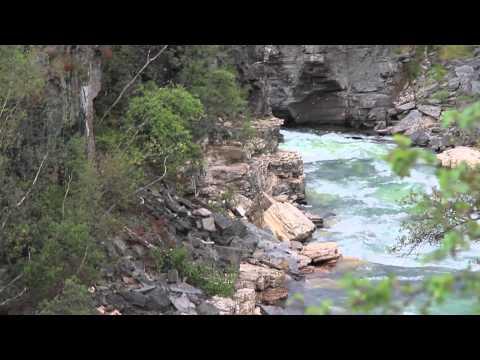 Videotagebuch Schweden: Tag 6 (Nationalpark Abisko und polarer Birkenwald)