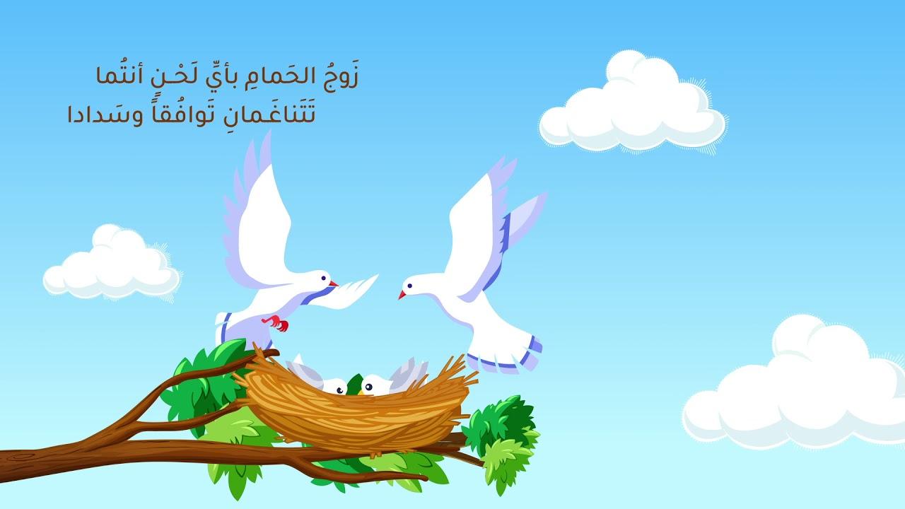 محمد الغزالي | زوج الحمام - كلمات صالح الديلمي (أسير البيان)
