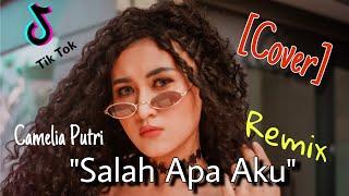 Download lagu Salah Apa Aku (Entah apa yang merasukimu) Remix - Camelia Putri (Cover)