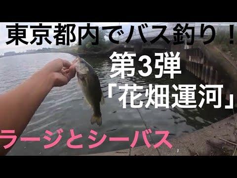 【東京バス釣り調査 】第3弾 花畑運河 中川編 都内 バス釣り シーバス釣り