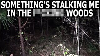 Something's Stalking Me in the Woods