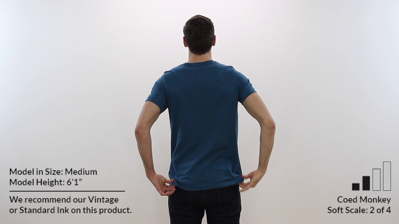 8ab22d03 Custom CANVAS 100% RINGSPUN COTTON UNISEX T-Shirt Style 3001 360° Product  Video by Coed Monkey