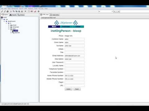 Jxplorer to connect to LDAP