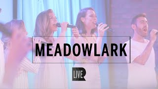 Meadowlark (cover) - RANGE [Live @ SubCulture]