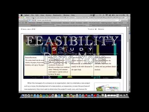 Feasibility Report Lecture