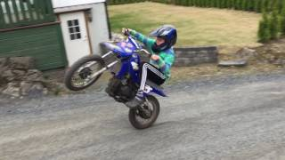 Pw 80 Wheelie