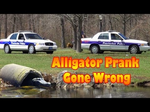 Thumbnail: Alligator Prank Gone Wrong