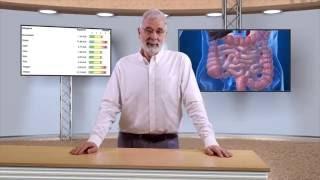 IgG4-Test,  Nahrungsmittelunverträglichkeiten und Reizdarm