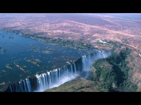 African Wildlife Landscapes and Species