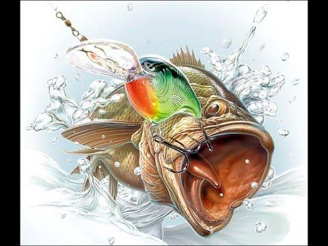 Рыбалка(Фото)