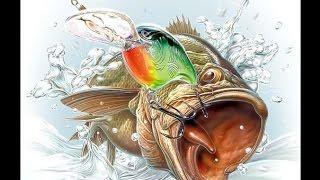 Рыбалка(Фото)(Мое первое видео))), 2016-07-24T22:39:29.000Z)