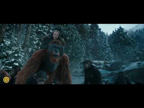 A majmok bolygója  Háború  Magyar szinkronos előzetes 2 16