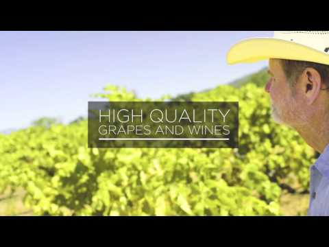 wine article What is sustainable winegrowing and certification