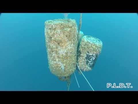 U455 Deep CCR Dive HD