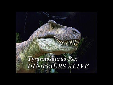 TYRANNOSAURUS REX : ANIMATRONICS DINOSAUR EXHIBITION
