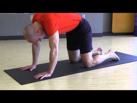 """37 """"yoga minute"""" cat/cow pose  youtube"""