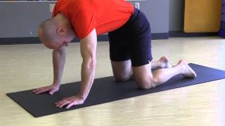 "#37 ""Yoga Minute"" Cat/Cow Pose"