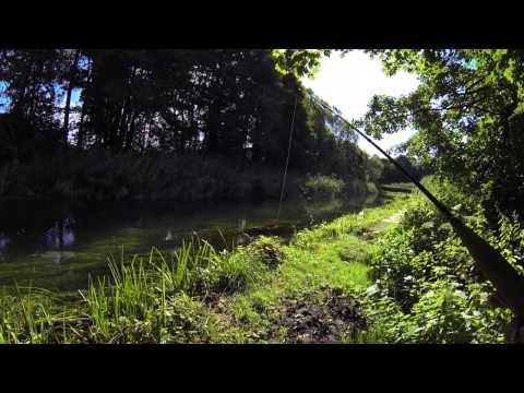 Flyfishing England River Itchen