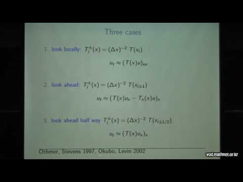 Mathematical modelling with fully anisotropic diffusion  / Thomas Hillen