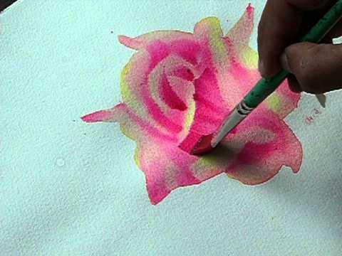 สีน้ำดอกกุหลาบง่ายๆ รูป A สาโรจน์ อนันตอวยพร