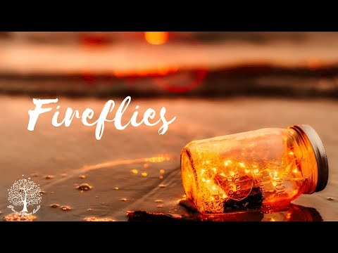 Fireflies [ASMR] [Friends to Lovers] [Romance]