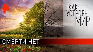"""Смерти нет. «Как устроен мир"""" с Тимофеем Баженовым (06.04.20)."""