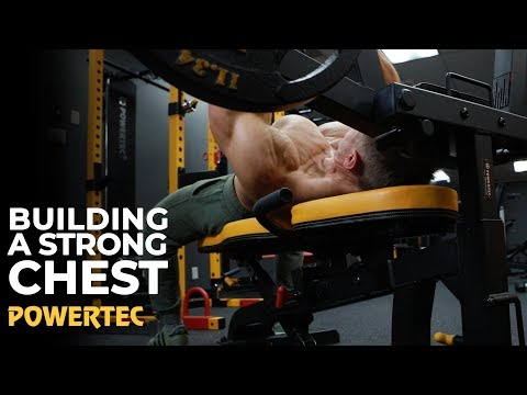 Build A Powerful Chest  - Powertec Fitness