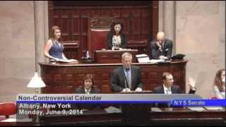 New York State Senate Session - 06/09/14