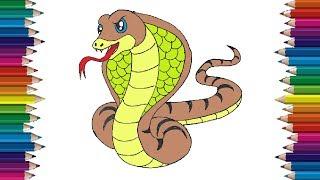 snake draw cartoon cobra easy drawing step drawings beginners simple animal htdraw aesthetic