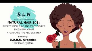 Natural Hair 101:  Creating Wash & GO and Twist Styles like a Pro - Full Webinar