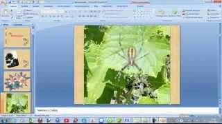 Три минуты и фотоальбом в программе PowerPoint, готов(, 2012-09-05T14:13:36.000Z)