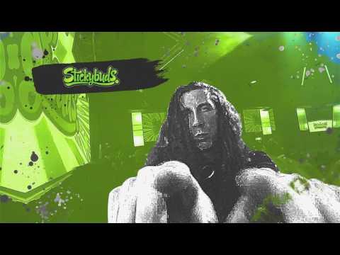 Stickybuds & Wbbl Show