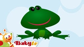 Frog - Learning Animal Sounds and Names for Kids & Toddlers | BabyTV